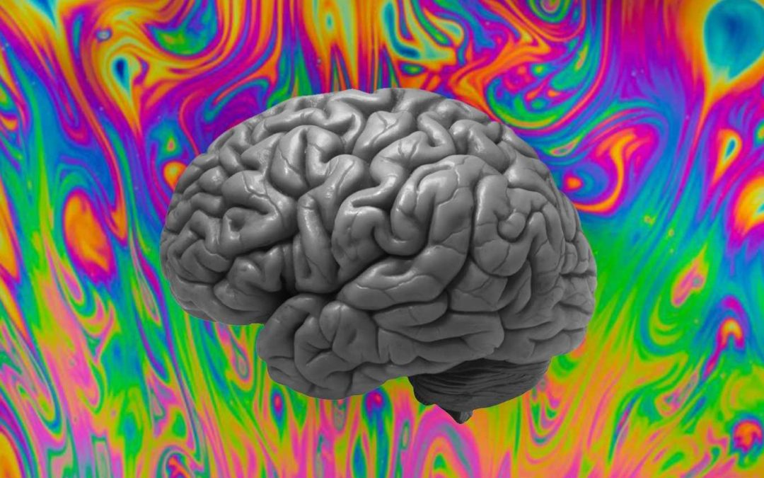 bonus double length PSYCH WARD, 210 minutes of the best psychedelic music from around the world